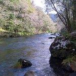 Top 10 activity in Galicia