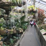 The greenhouses each feature a different environment of plants