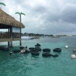 Belize Tradewinds Paradise Villas Foto