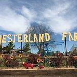 YesterLand Farm