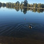 Beautiful Lake Wendouree, take the kids to feed the ducks or get some fresh air after a long dri