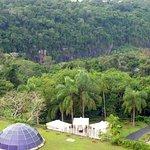 Vista desde la terraza (selva)