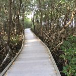 Photo of Four Mile Cove Ecological Preserve