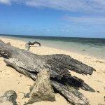 Foto de Green Island Resort