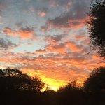 Astonishing skies, Bushman walk