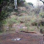 Photo de Nairobi Tented Camp