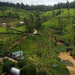 Photo of Heritance Tea Factory
