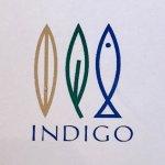 Photo de Indigo