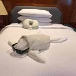 One of the daily towel creations from the housekeeping staff