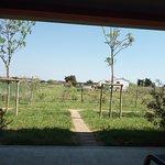 Agriturismo Capalbio Agrialbergo Foto
