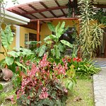 Photo de Hotel Guayabo Lodge