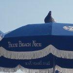 Photo of Blue Beach