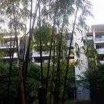 Photo de Oaks Mews Apartments