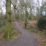 Woodland Trail.