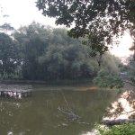 Foto de Infinity Resort Kaziranga