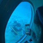 Photo of Submarine Safaris