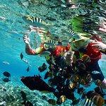 Spot snorkelling terbaik..