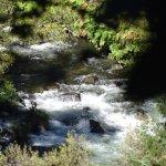Photo of Hedge Creek Falls