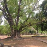 Photo of Sukhothai Historical Park