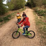Forest of Dean Cycle Track next door