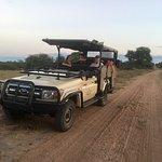 Photo of Hamiltons Tented Safari Camp