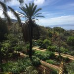 Photo de Madeira Botanical Garden
