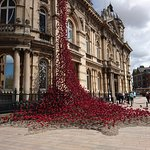 Ceramic poppy's climbing the outside of the museum