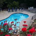 Seasonal Swimming - May thru September