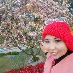 Flower Hunting at Samsung Hotel park♡
