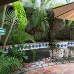 The Patio at Pancho's Backyard