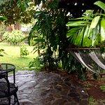 Pura Vida Hotel Φωτογραφία