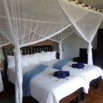 Photo of Etosha Safari Lodge