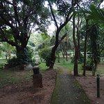 Photo of Sigiriya Cottage