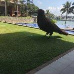 Foto de Cinnamon Lakeside Colombo