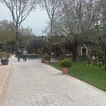 Photo of Agriturismo da Baffone