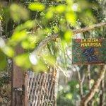 Photo de La Selva Mariposa