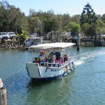 Arriving back in harbour after a Morning Eco Rainforest River Cruise