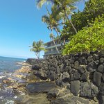 Getting ready to snorkel right by the Kona Tiki Hotel.