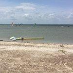 Bird Island windsurfing