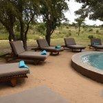 Foto de Shindzela Tented Safari Camp