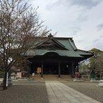 桜、散ってしまいました Narita city tourist spot The cherry blossom flew away.
