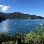 Photo de Bay of Many Coves