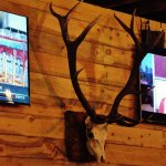The animal skull on the east wall between the two sports screens