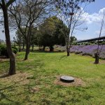 Kibbutz Mizra Country Lodging