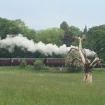 Watch the steam train go by