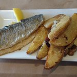 Parmesan grilled trout