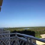 Foto di Hyatt Regency Coconut Point Resort & Spa