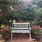 Outside back area - lovely peaceful garden