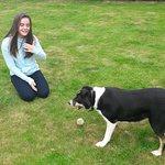 Rosie playing ball in the garden