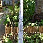Photo de La Cocoteraie Ecolodge